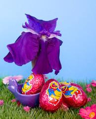 oeufs de pâques et iris de printemps