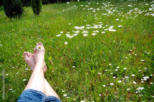 Fusse auf Blumenwiese im Frühling