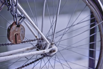 The wheel of a bicycle