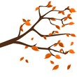 Twig with golden leafs, seasonal backgrounds