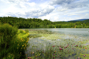 Dutch Lake, Clearwater, British Columbia, Canada