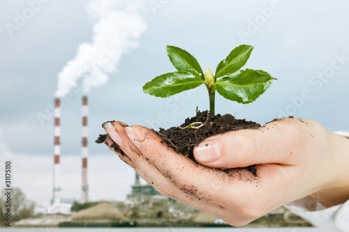 human hands care about green plant over industrial background