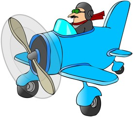 Pilot In A Small Plane