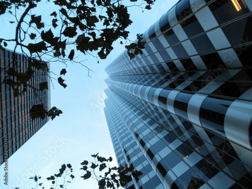 Looking up through branches at tall modern buildings at dusk