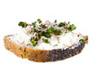 Slice of bread  with cottage cheese and radish sprouts