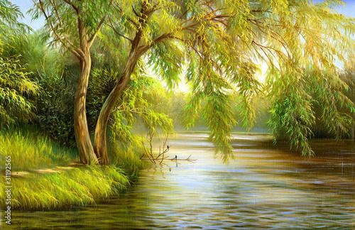 Wood lake - 31192565