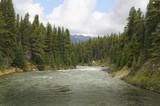 Maligne River near Jasper in Alberta Canada poster