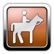 """Bronze Glossy Square Icon """"Horse Trail"""""""