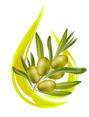 Olive oil. Stylized drop of oil, and olive branch inside. Vector