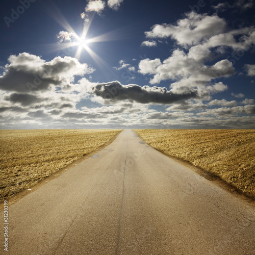 Road in summery countryside