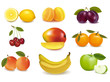 Group with different sorts of fruit. Vector.