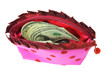 US dollars in lady's pink purse