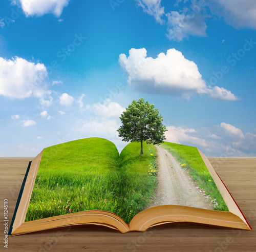 magic book with a landscape