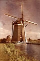Windmills on dutch countryside