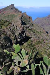 Ile de Tenerife