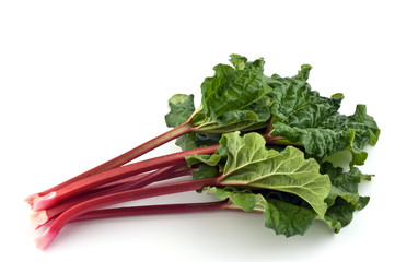 Rhubarb bunch isolated