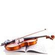 Violin and bow - 31263548