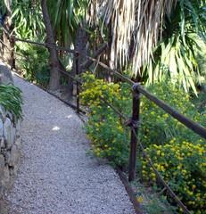 passeggiando in giardino