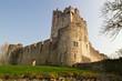 Ross castle in Killarney - Ireland