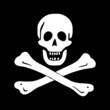 jolly roger (pirate flag)