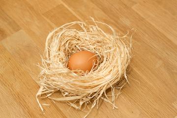 Hühnerei im Nest