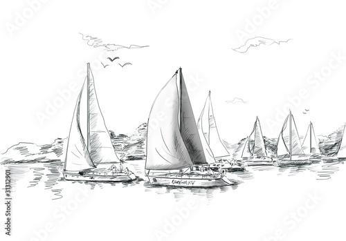 Sailing yachts and boat illustration - 31312901