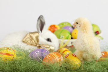 Cute baby chichen looking at Easter bunny and a basket with eggs