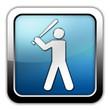 "Glossy Square Icon ""Baseball"""