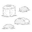 Bread Sketches