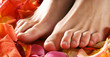 Sexy feet of a young woman covered with bright fallen petals