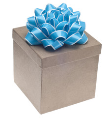 Closed Brown Paper Recycled Gift Box with Bow