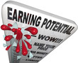 Earning Potential - Thermometer of Income Expectations
