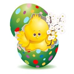 Pasqua Pulcino e Uova Decorate-Cute Easter Chick in Egg-3