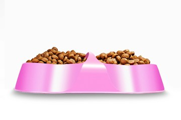 animal food in the plate