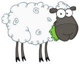 Fototapety Black Sheep Cartoon Character Eating A Grass