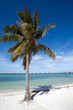 White sand beach in Bahia Honda state park, Florida