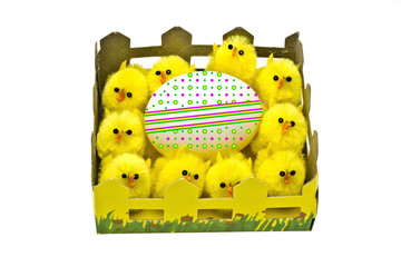 Yellow chickens and easter egg