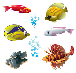 Set of tropical bright fishes and polyp, vector illustration