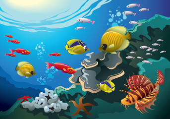 Underwater world, coral reefs, many fishes, vector