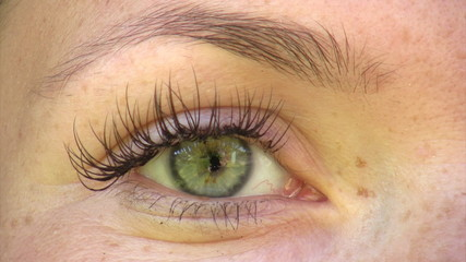 Close-up of young woman's green eye