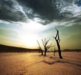 Fototapete Trockenheit - Afrika - Naturlandschaft