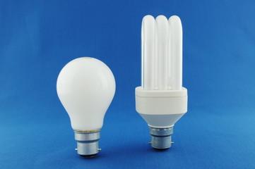 Traditional and Energy Saving Light Bulbs