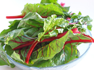 Full bowl of chard