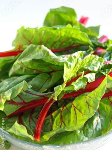 Swiss chard up close