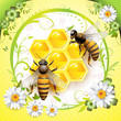 Two bees and honeycombs over springtime background