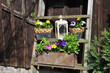Blumen Treppe