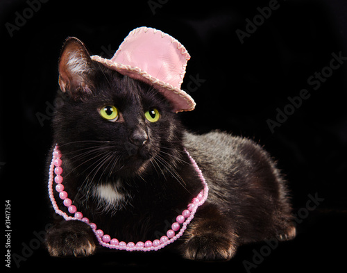 Black cat wearing pink hat and beads, against black background