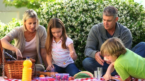 Family  picnic in garden