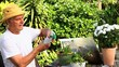 Mature man potting plants in his garden