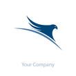 Logo eagle on the world # Vector
